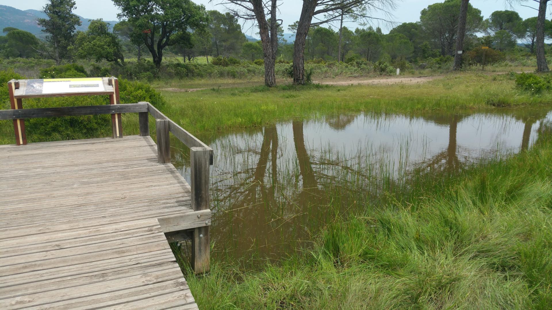 Lac de l endre et de la mirade golf saint andreol gites du moulin de callas var 6 2