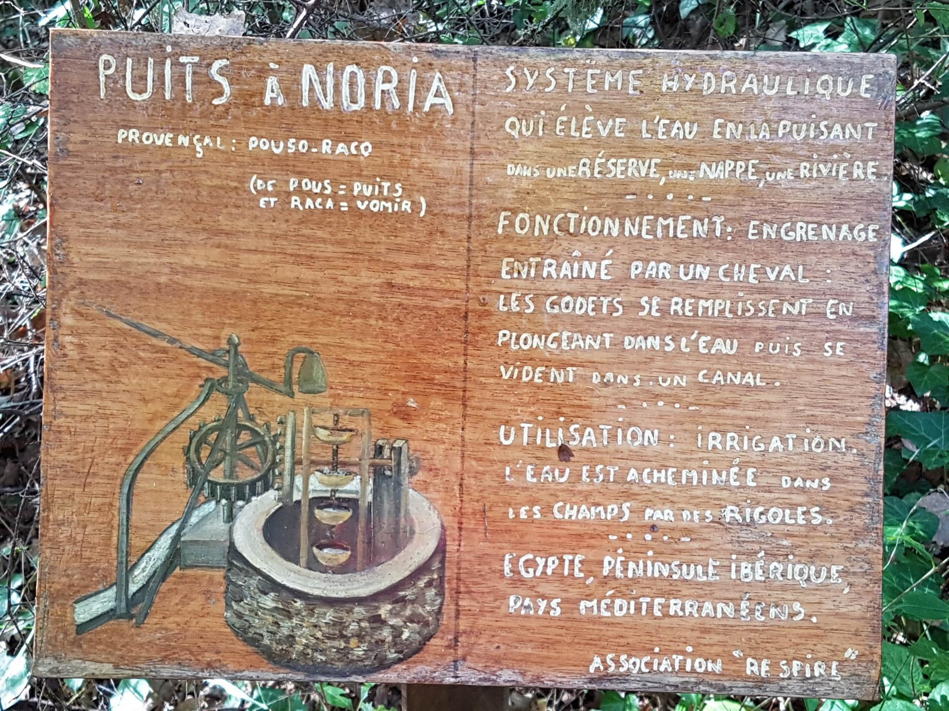 Lac du rioutard saint paul en foret gorges du verdon sejour provence 13