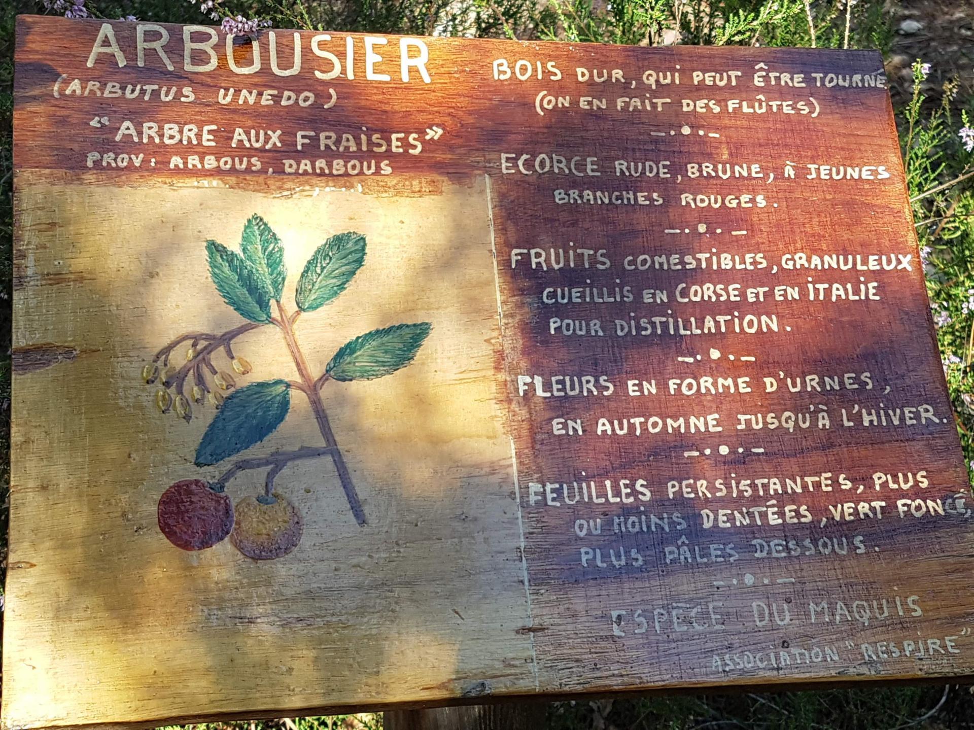 Lac du rioutard saint paul en foret gorges du verdon sejour provence 14