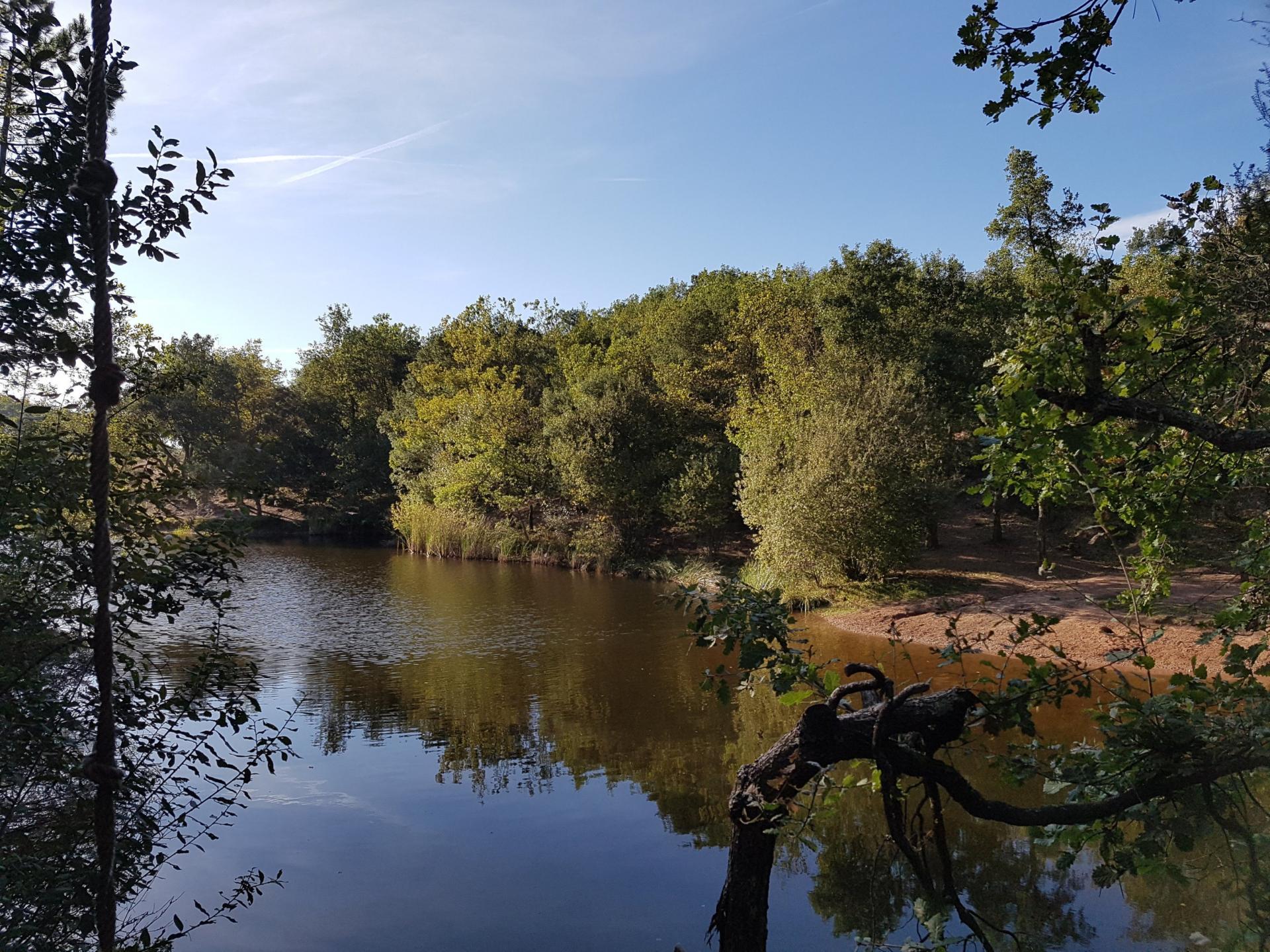 Lac du rioutard saint paul en foret gorges du verdon sejour provence 2