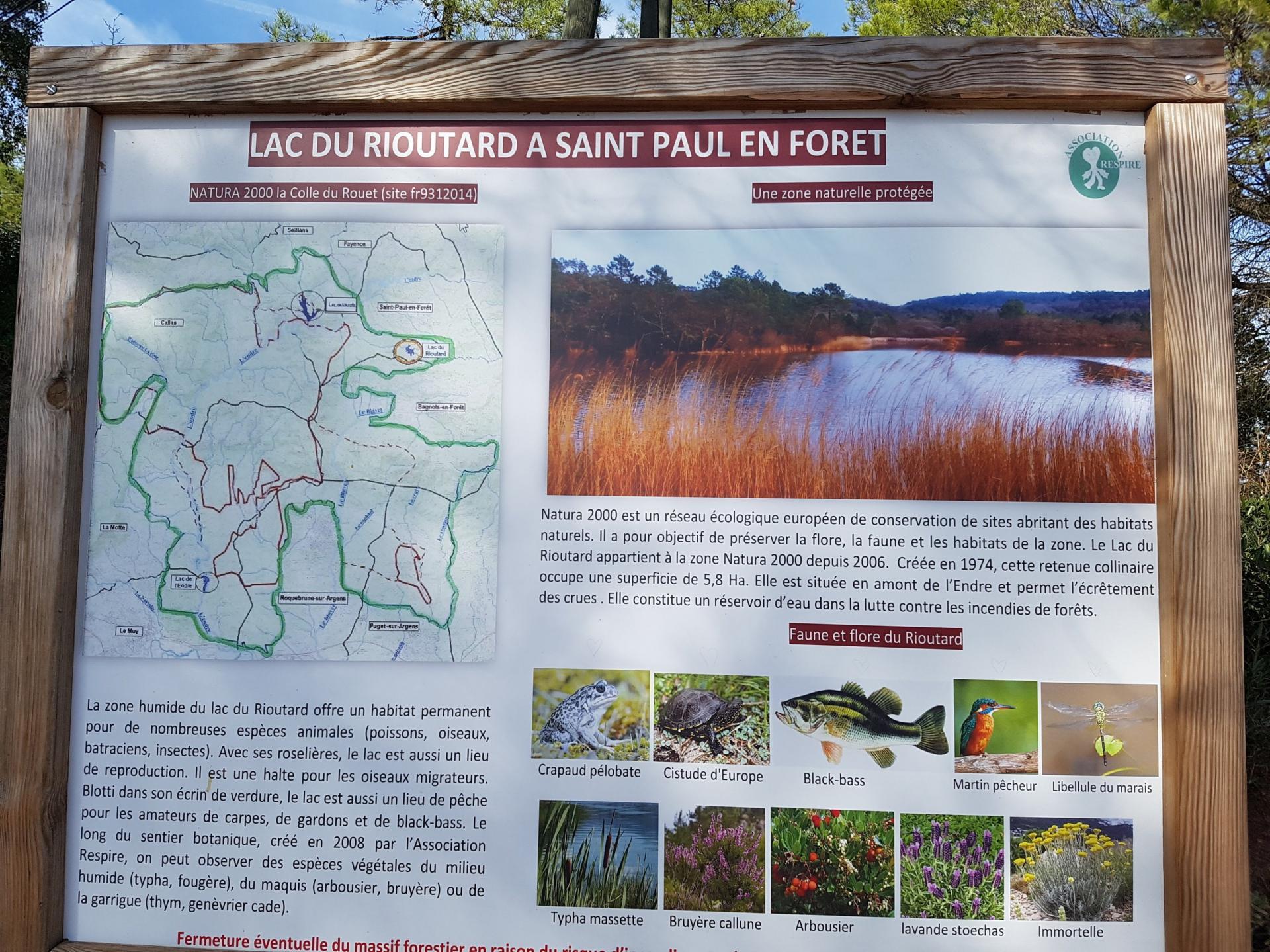 Lac du rioutard saint paul en foret gorges du verdon sejour provence 4
