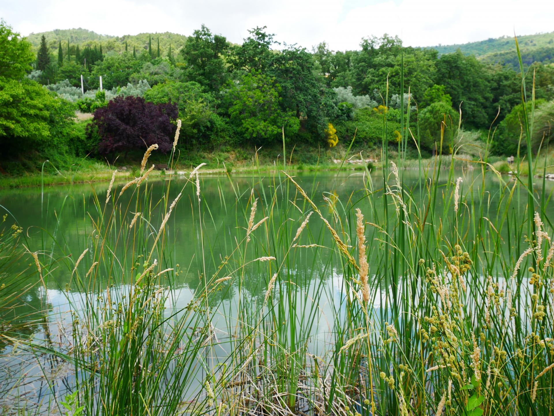 Le lac de la risse a callas dans le var provence 11