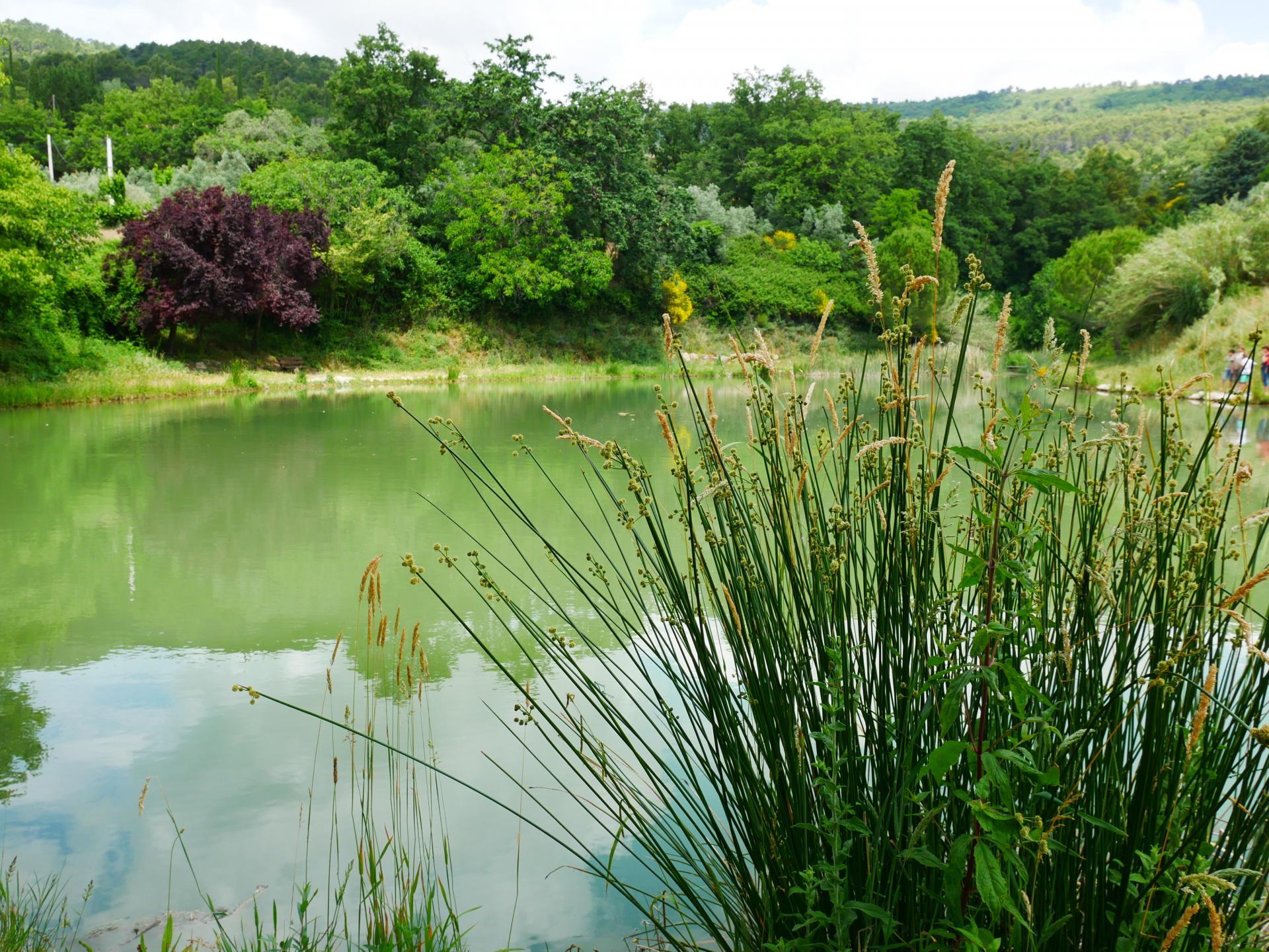Le lac de la risse a callas dans le var provence 12
