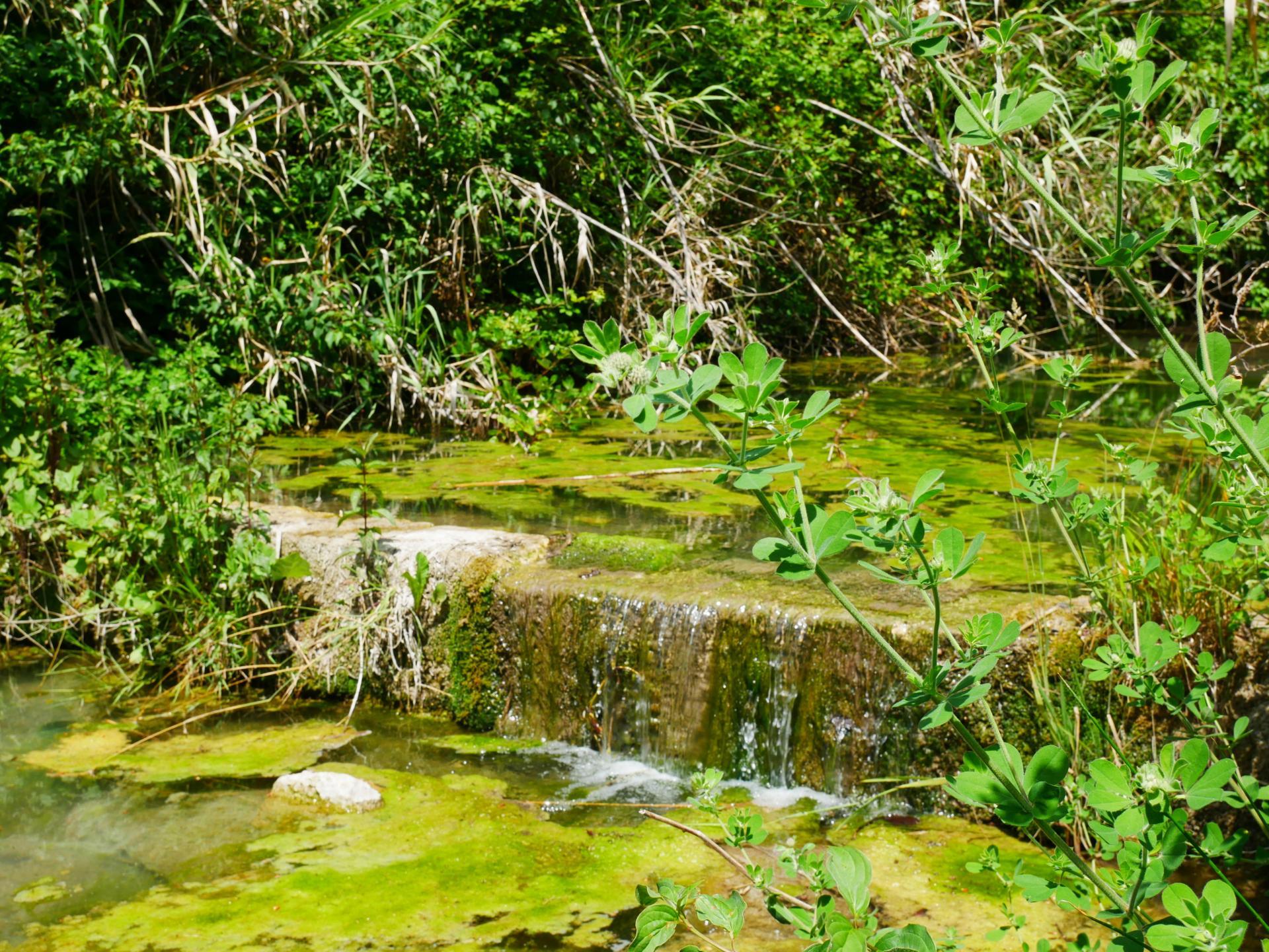 Le lac de la risse a callas dans le var provence 3